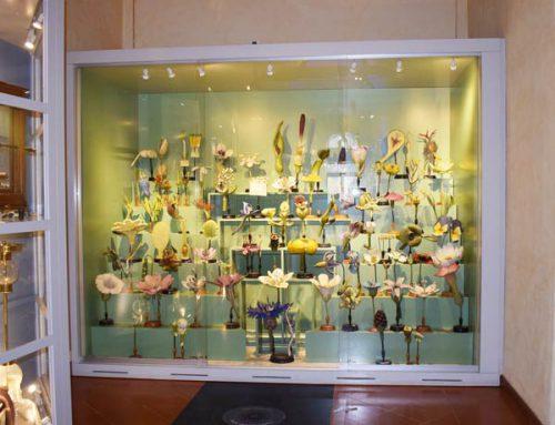 Models of plants
