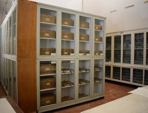 Technological and pharmaceutical herbarium